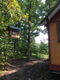 The bird feeder Bill put up for us!